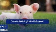 تفسير رؤية الخنزير في المنام لابن سيرين للرجل والمرأة