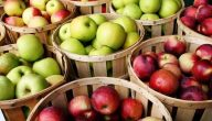 تفسير رؤية التفاح في المنام لابن شاهين