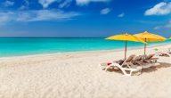 أهم النصائح للحماية من الأمراض الصيفية