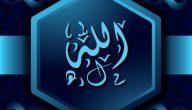 عرض المشركون على النبي ان يعبدوا الله