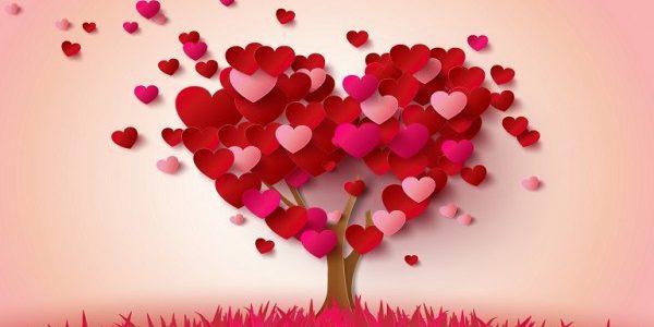 هدايا عيد الحب للرجال والحبيب