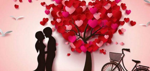 هدايا عيد الحب لزوجتي موقع البديل