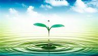تفسير رؤية الماء في المنام لابن سيرين